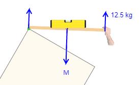 Gesamtgewicht Gasdruckfeder berechnen