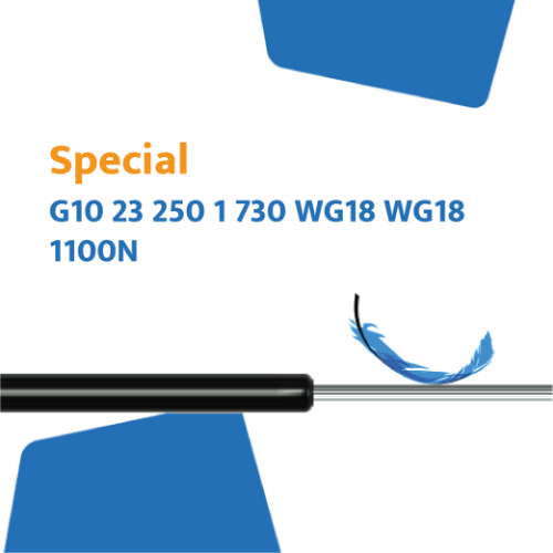 Hahn Gasfeder G10 23 250 1 730 WG18 WG18 1100N