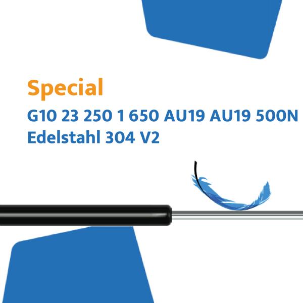 Hahn Gasfeder G10 23 250 1 650 AU19 AU19 500N Edelstahl 304 V2